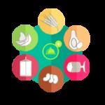 software para nutriólogos funciones